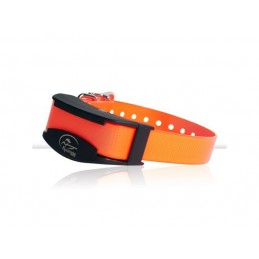 Collar Adicional Trainer 425 y 825 SDR-AFE