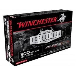 Munição Winchester Ex. Accubond 300 Win. Mag. - 180Gr
