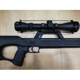 Walther G22 .22